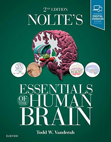 Nolte's Essentials of the Human Brain 2nd Edition (2018) (PDF) by Todd Vanderah PhD